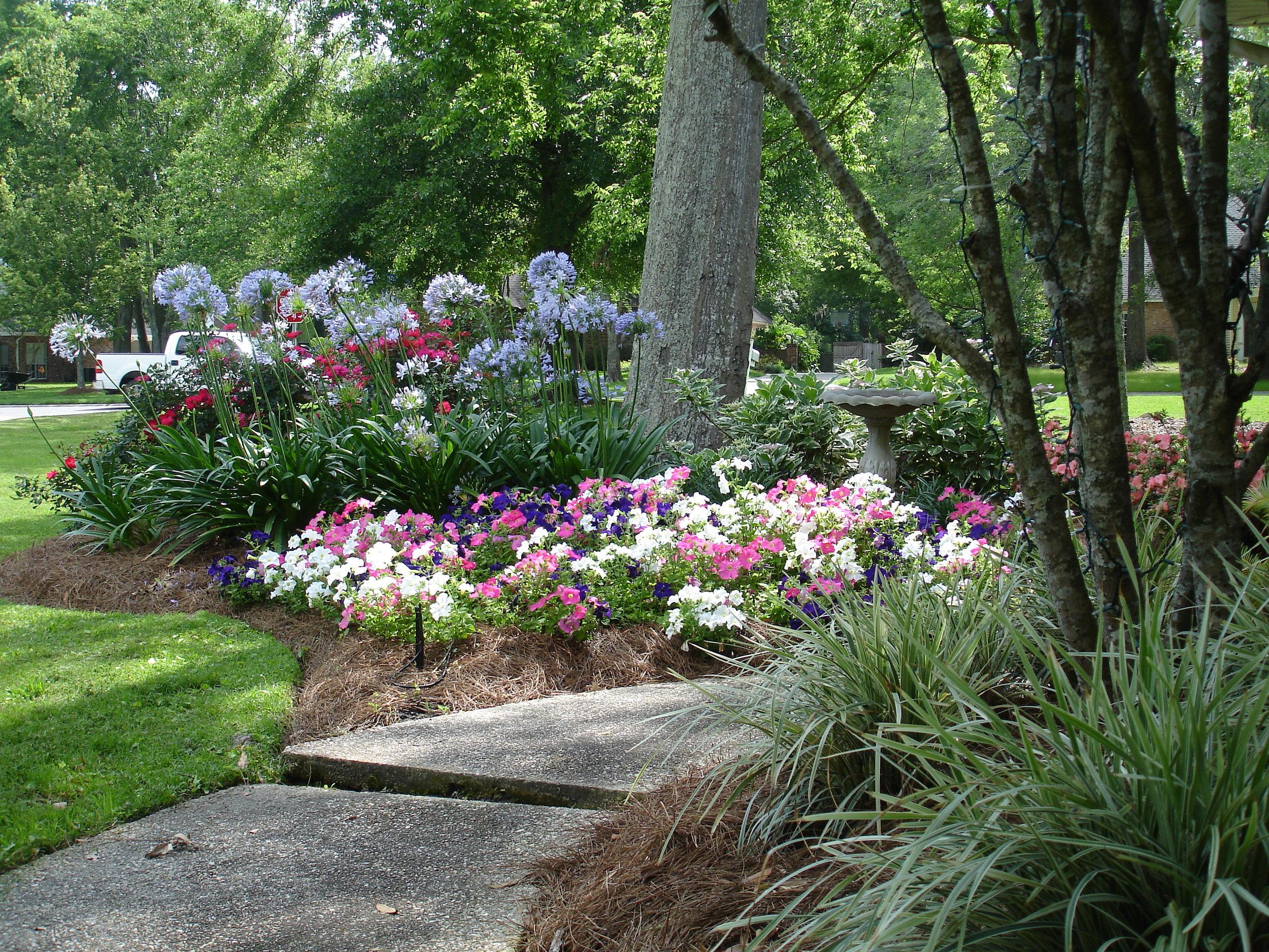 flower bed maintenance