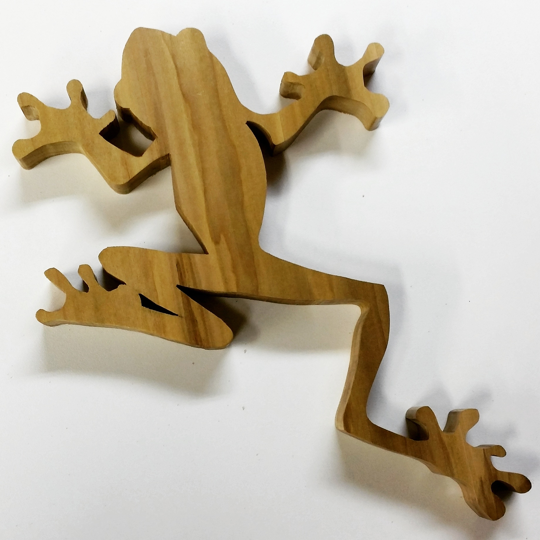 Tree Frog Wall Art