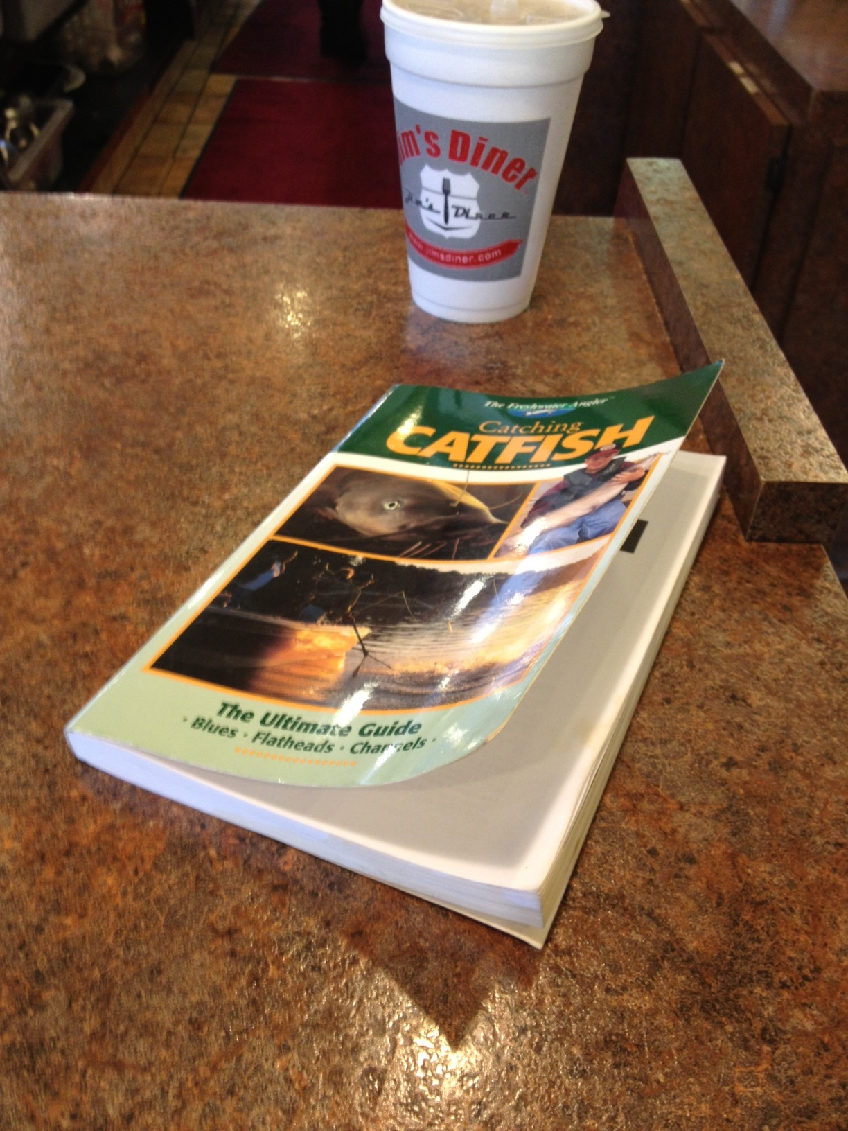 book_catfish