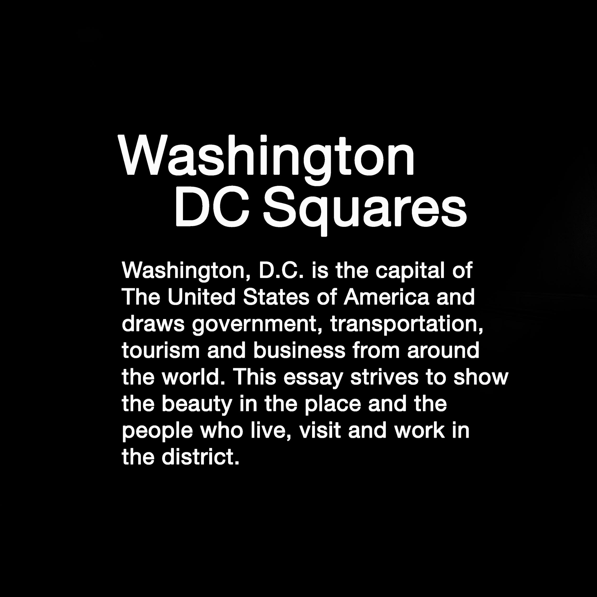 Dc_citysquares_summary.jpg