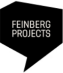 Logo Feinberg Projects.png
