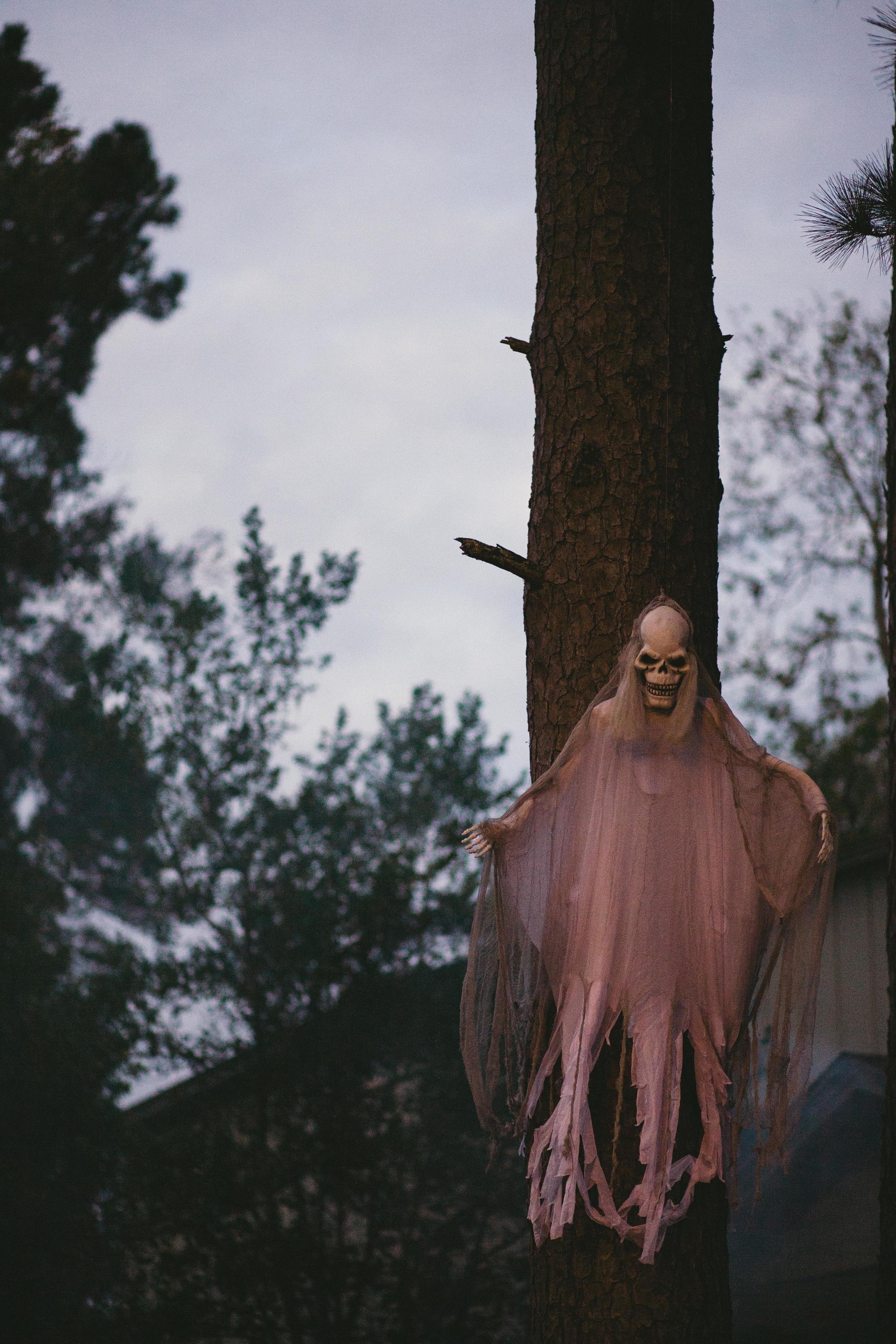 tallahassee-photography-halloween-8826.jpg