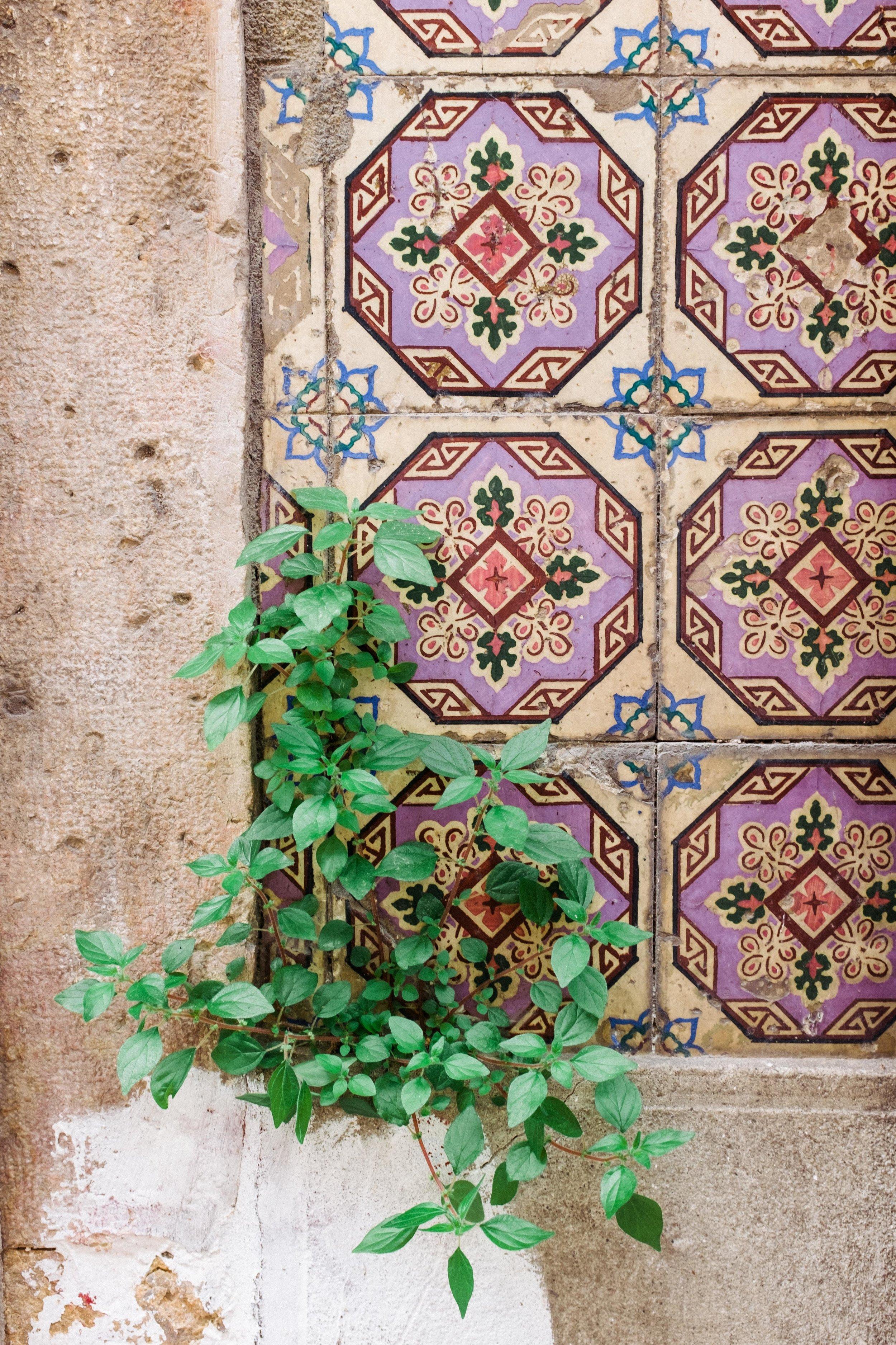 lisbon-portugal-azulejos-tiles-close-up