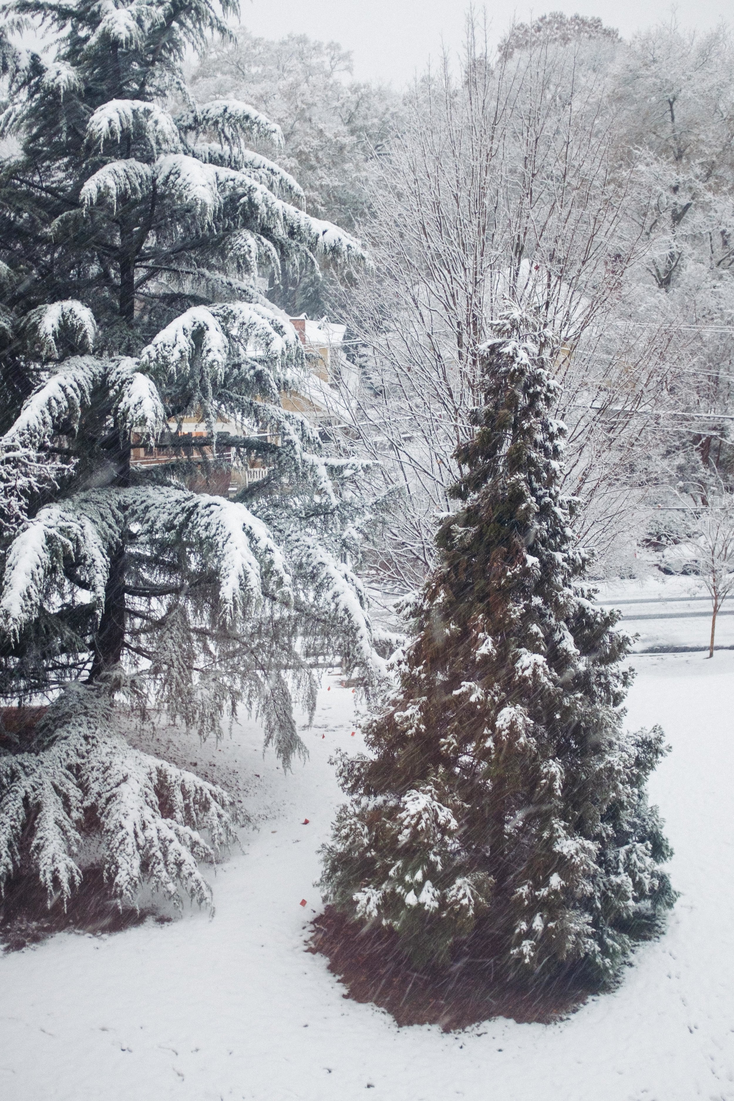 atlanta-georgia-snow-december-2017