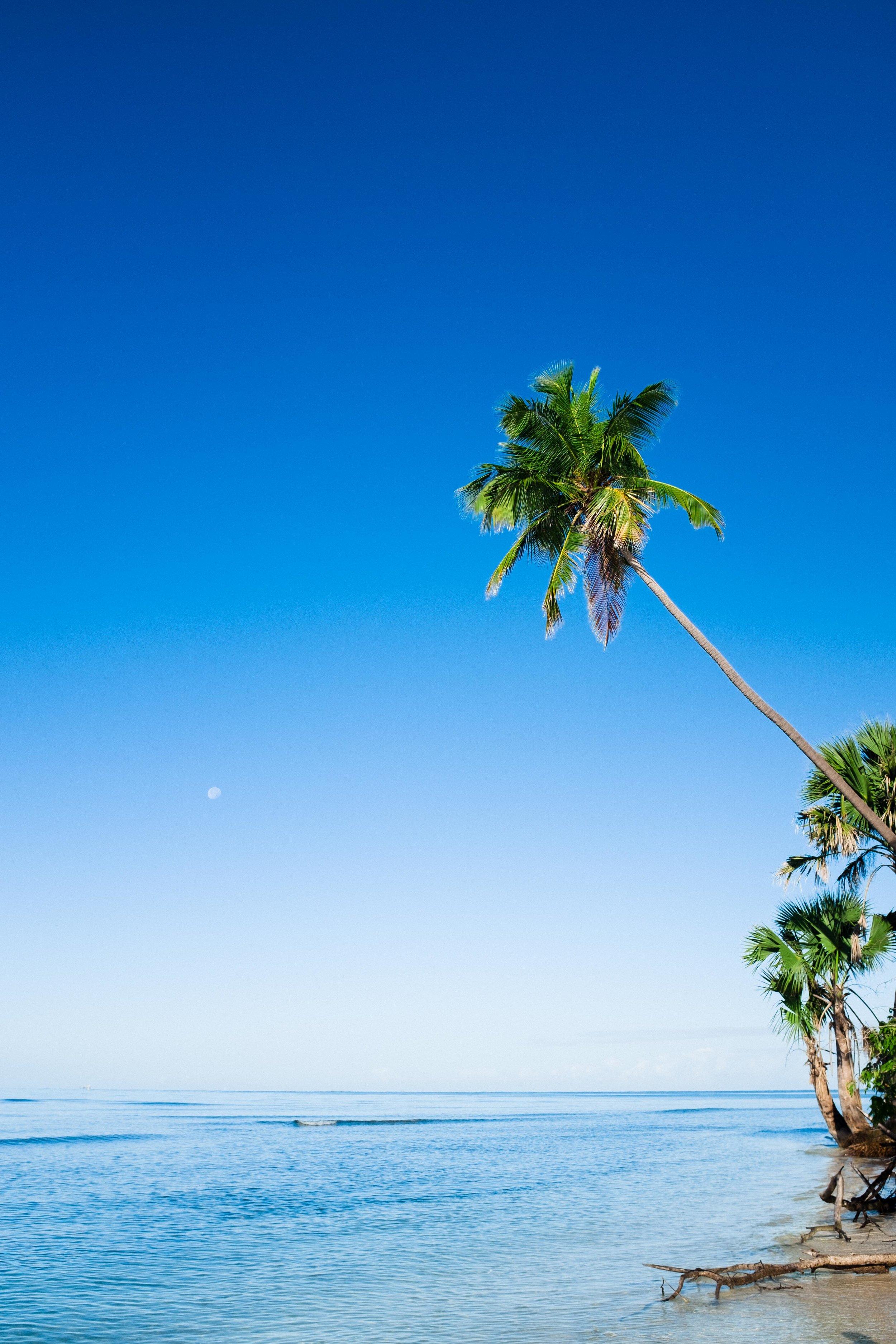 puerto-rico-cabo-rojo-playa-buye-beach-6694.jpg