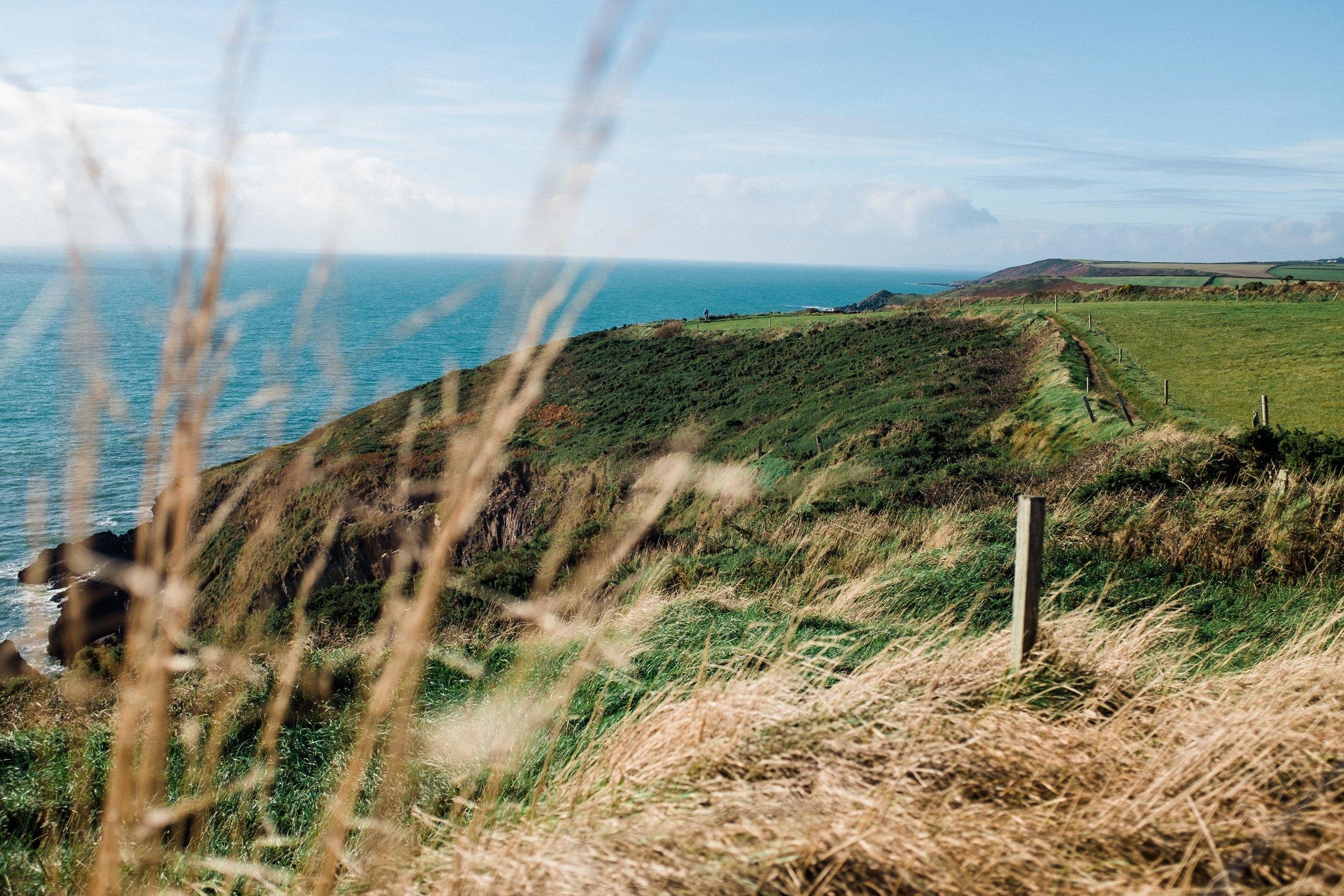 ballycotton-ireland-cliff-walk-5971.jpg