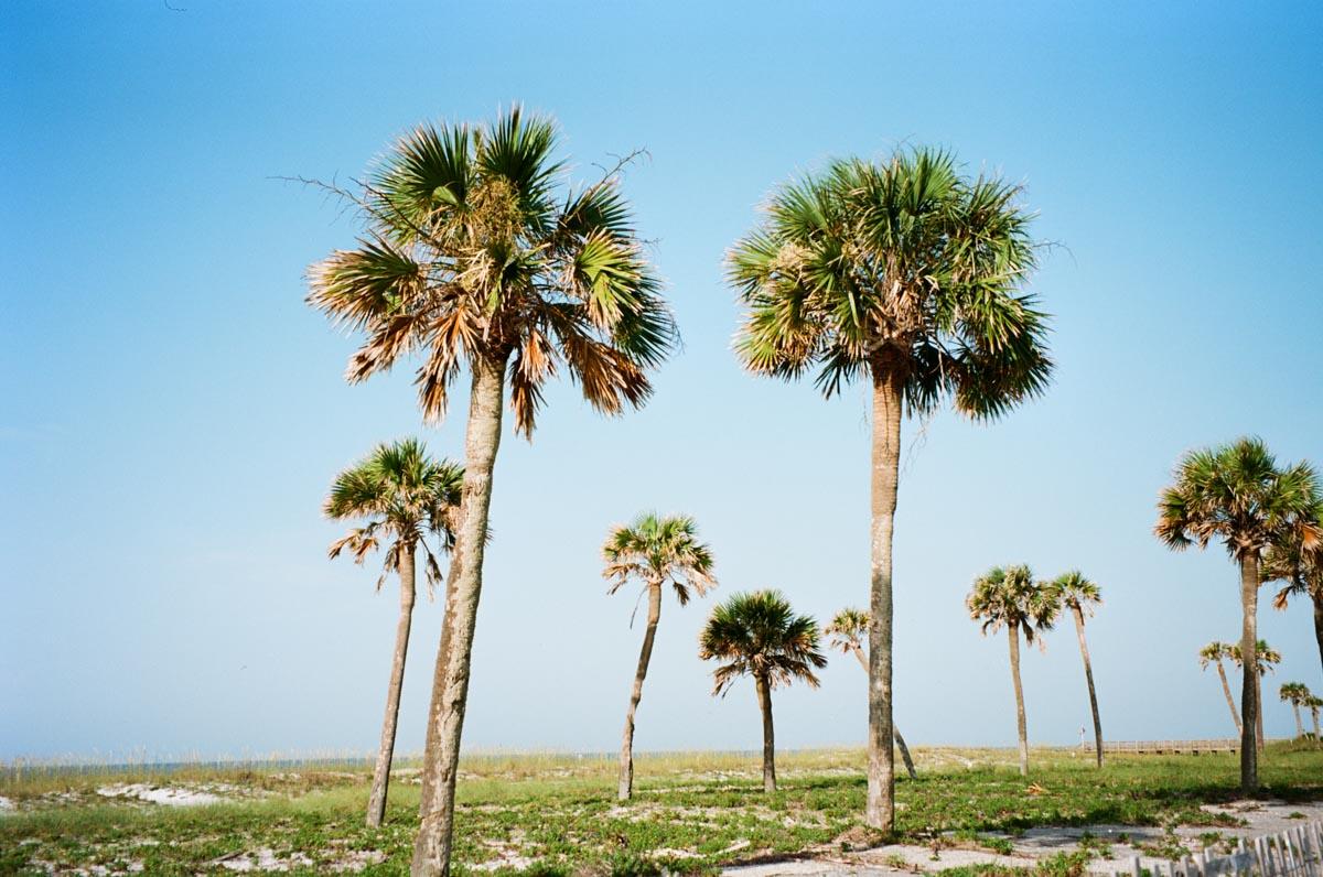pensacola-beach-florida-000034570007.jpg