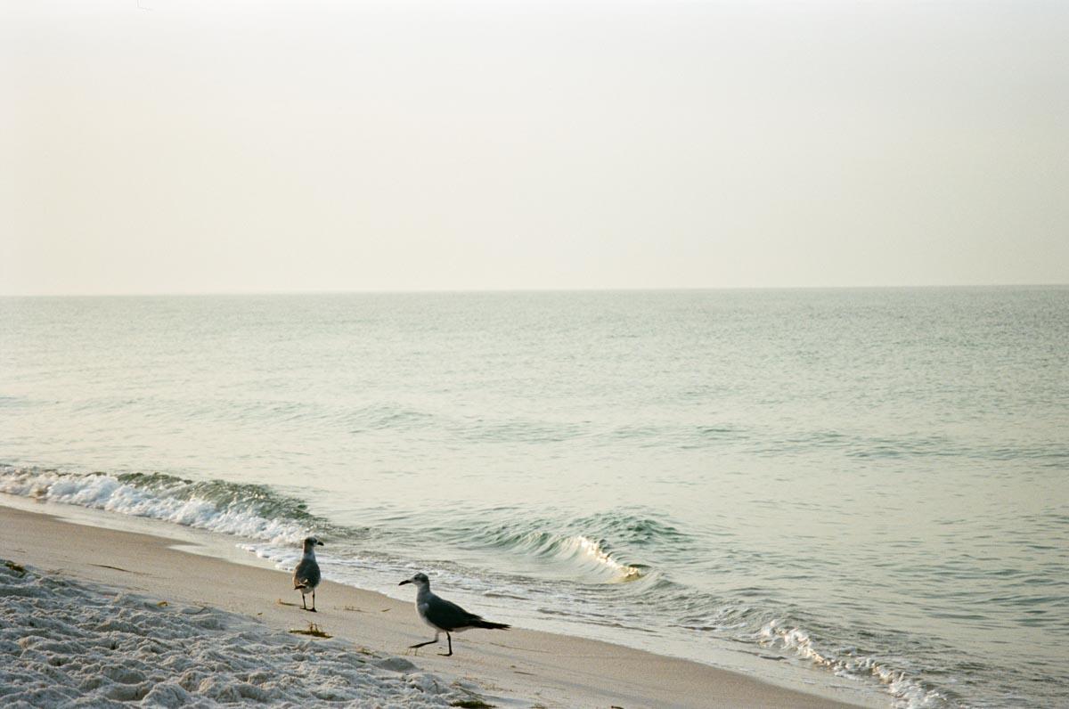 pensacola-beach-florida-000034570013.jpg
