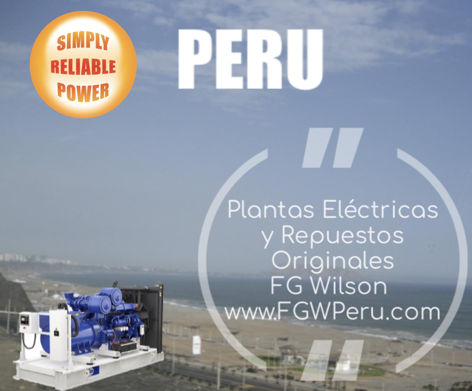 Distribuidores AutorizadosFG Wilson - + 500 Grupos Electrógenos disponibles para despacho inmediato.+$3M en inventario de Repuestos Originales+25 años en el mercadoSoporte LocalEntrenamiento