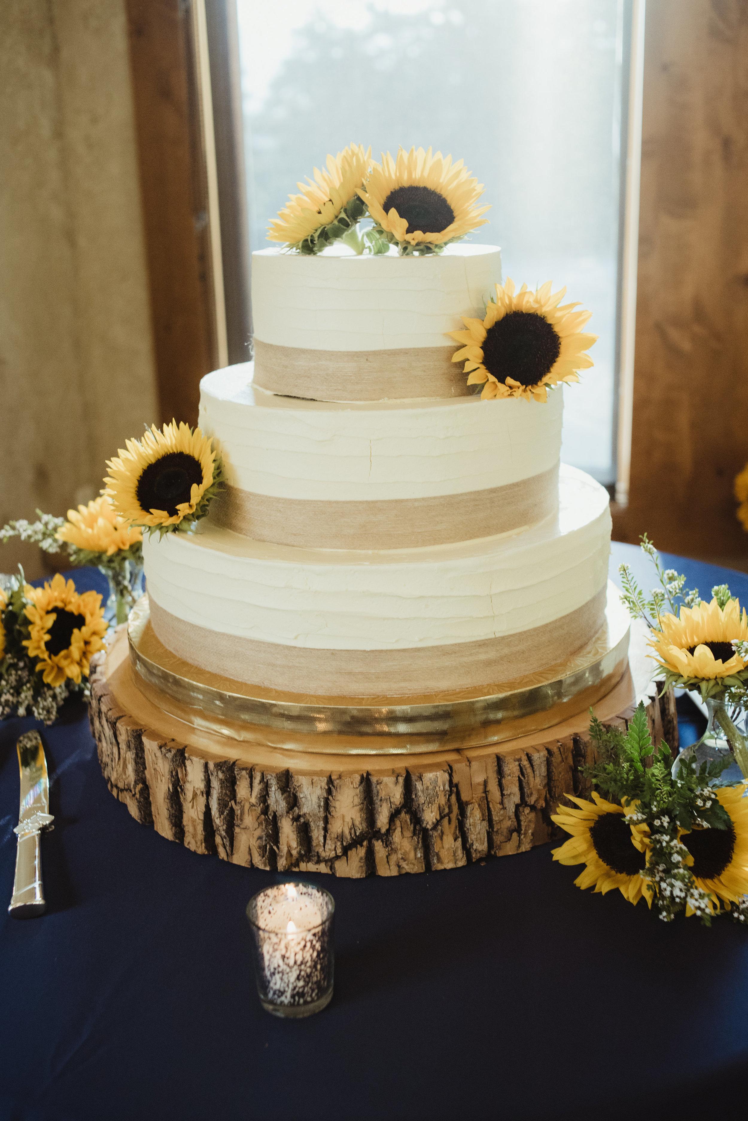 Karen Shannon wedding-Reception-0016.jpg