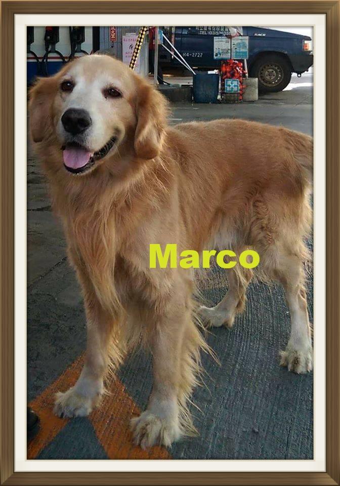 Marco-1.jpg