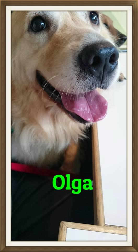 Olga1.jpg