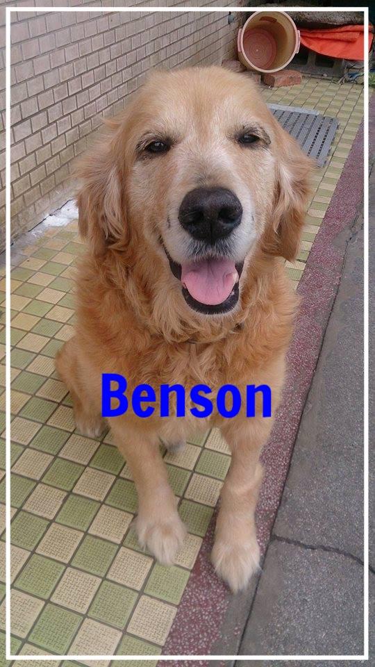 Benson-1.jpg