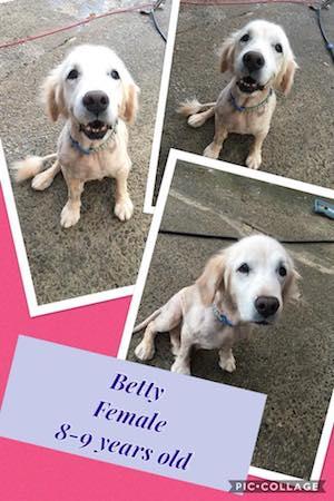betty-3.jpg