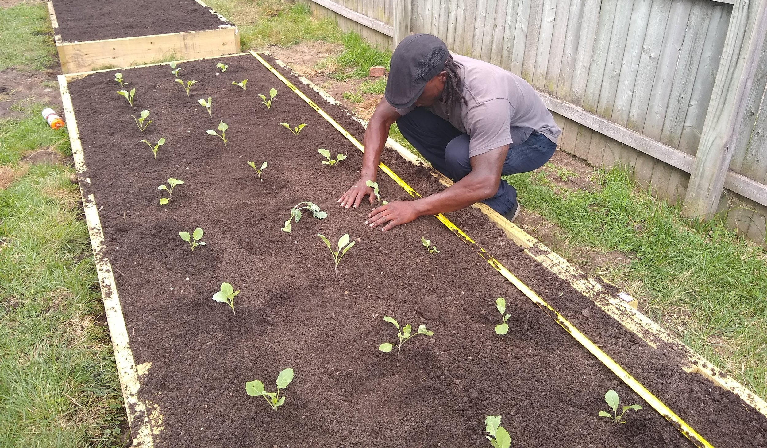 Detroit Michigan - A healthy eating initiative focusing on sustainable food production and community involvement.