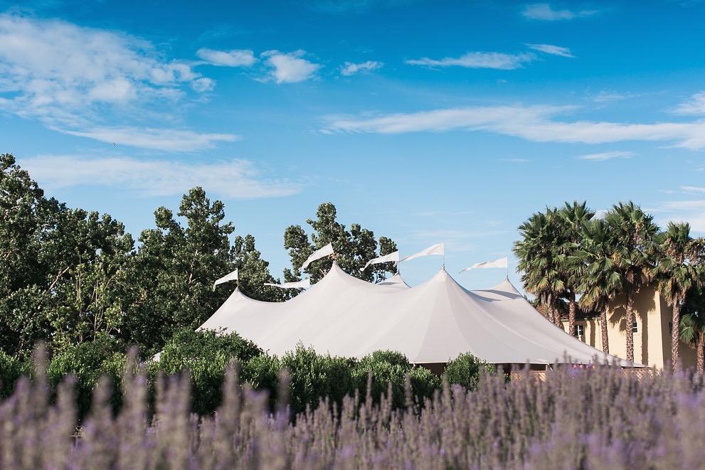 JENNIFER-SKOG-romantic-outdoor-ca-bear-flag-farm-wedding-katherine-michael-0655P.jpg
