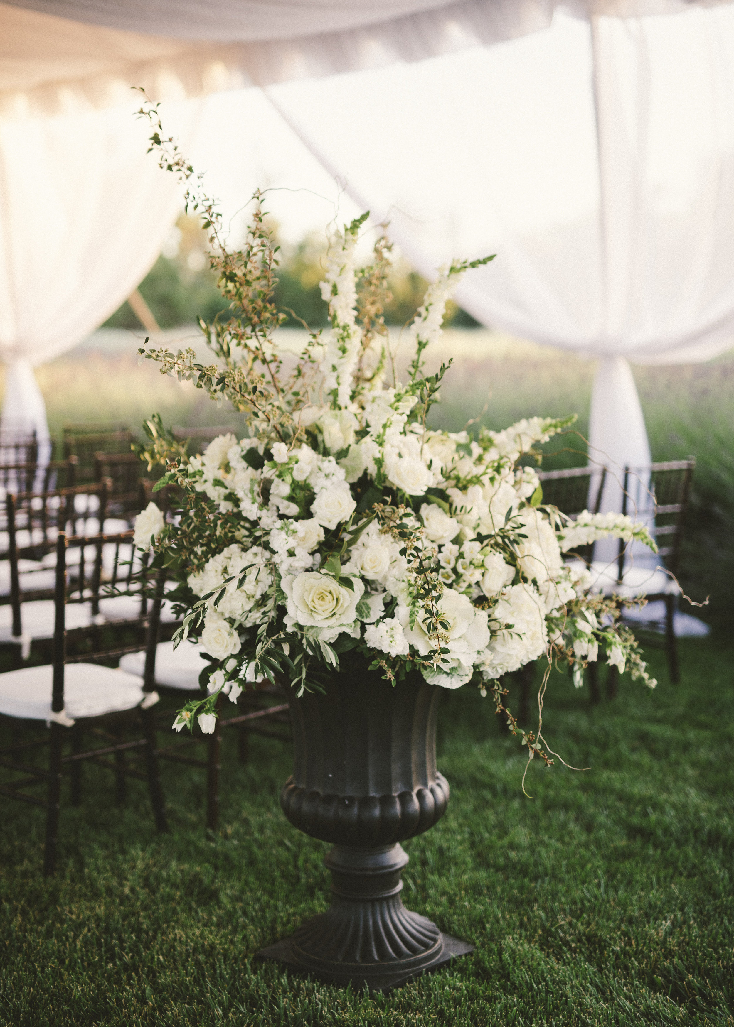 Tented Ceremony from a Dream