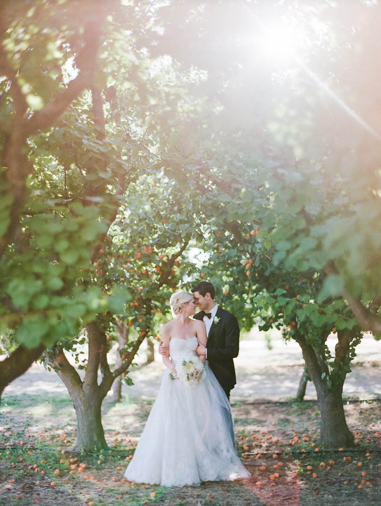 Apricot Orchard Portraits
