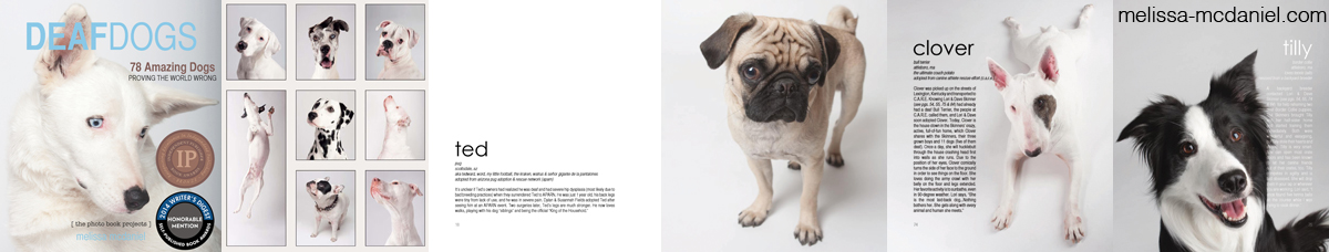 Deaf Dogs photo book