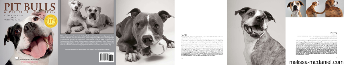 Pit Bulls & Pit Bull Type Dogs photo book