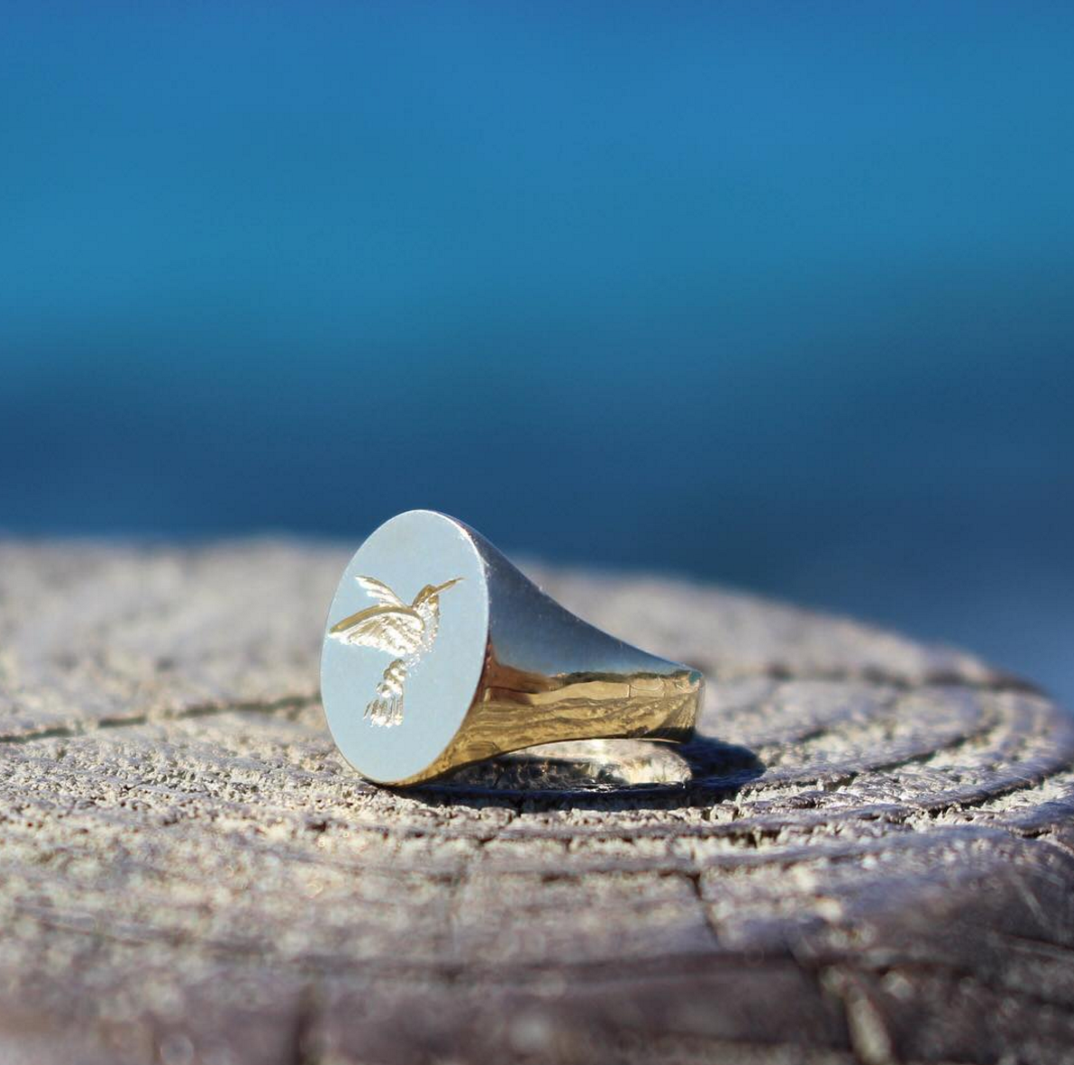 Read More about Rebus Signet Rings