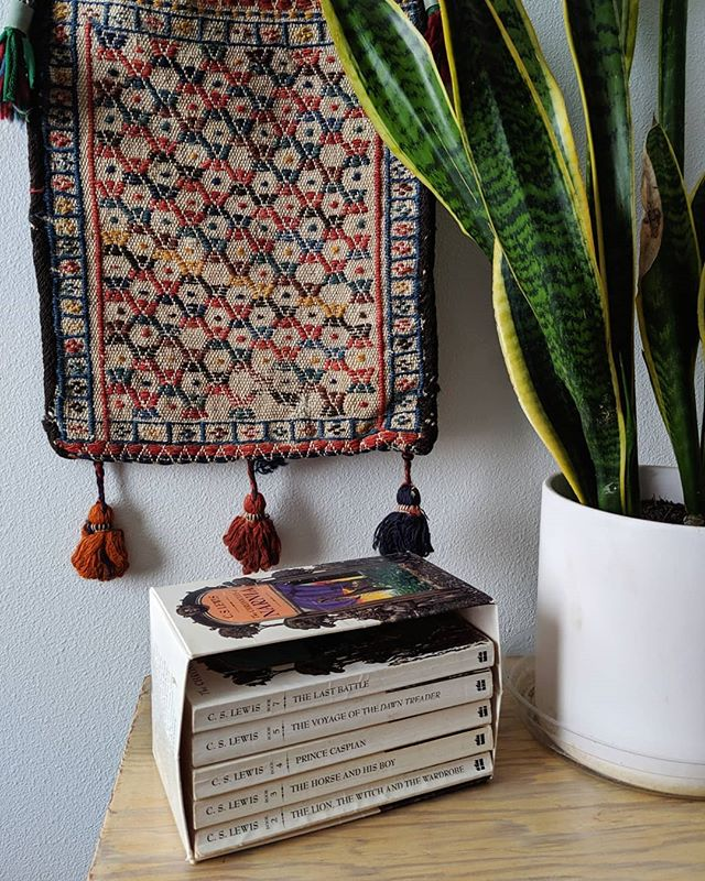 Maybe if I read them instead of pulling out my phone to stage and take photos of them I'd be further along. 🤣 Also, eep at the brown part of my snake plant, the rest of it is fine though, that's just some character on it.