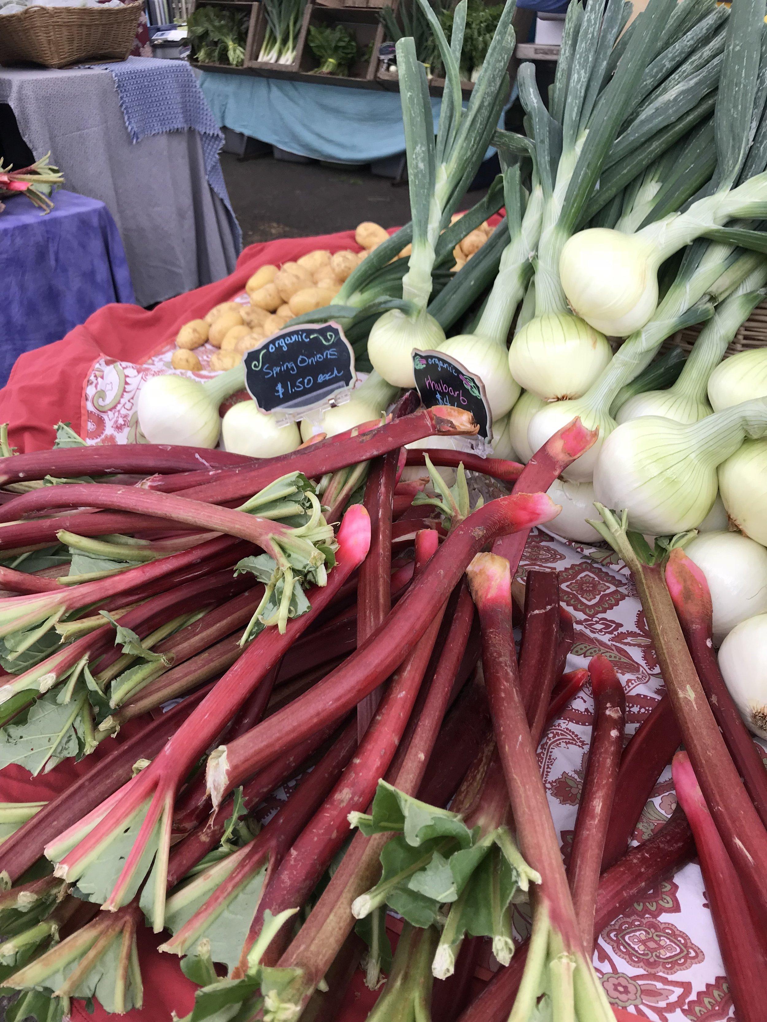 Rhubarb at Farmer's Market