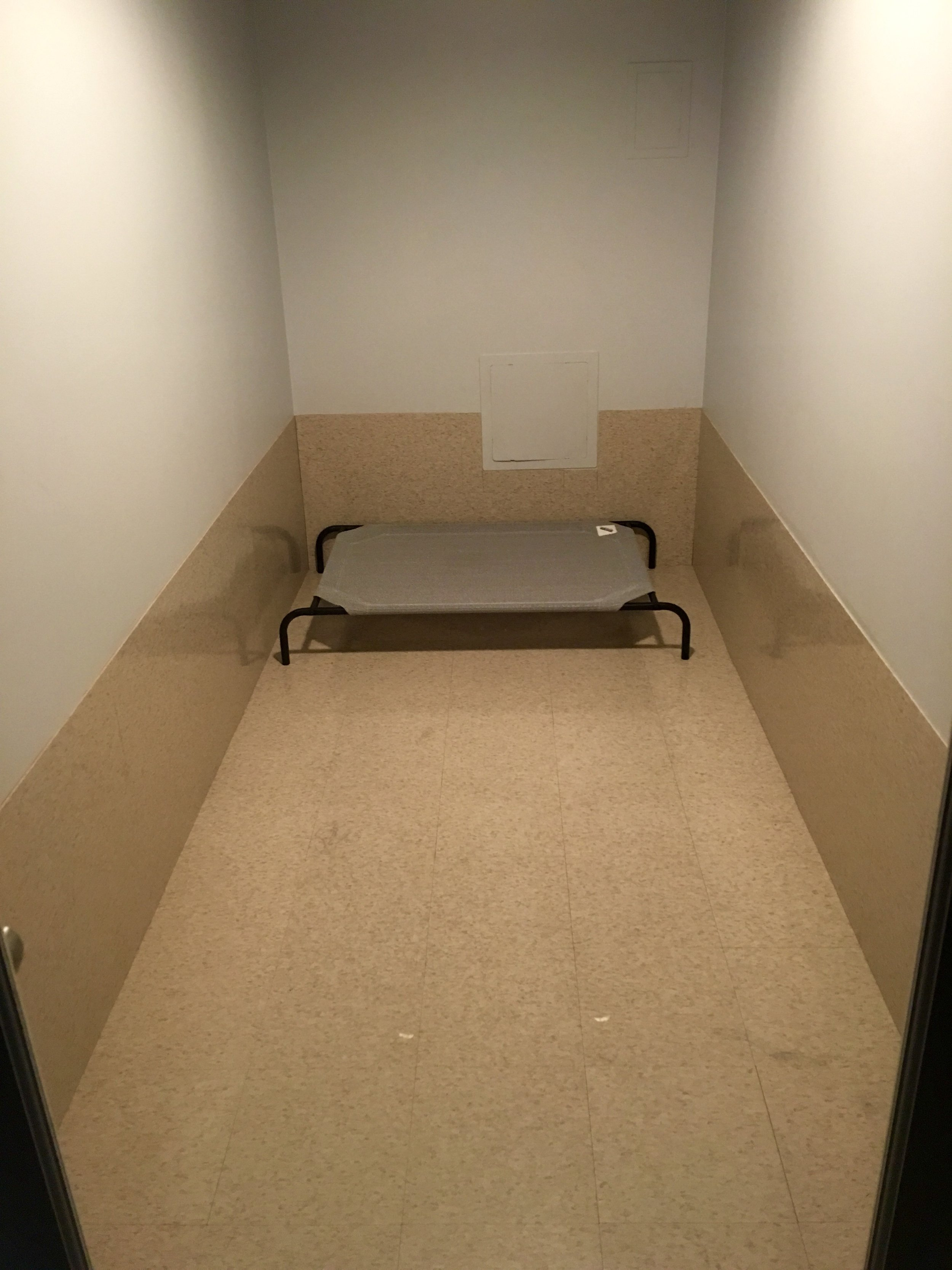 OUR STANDARD SIZE ROOM