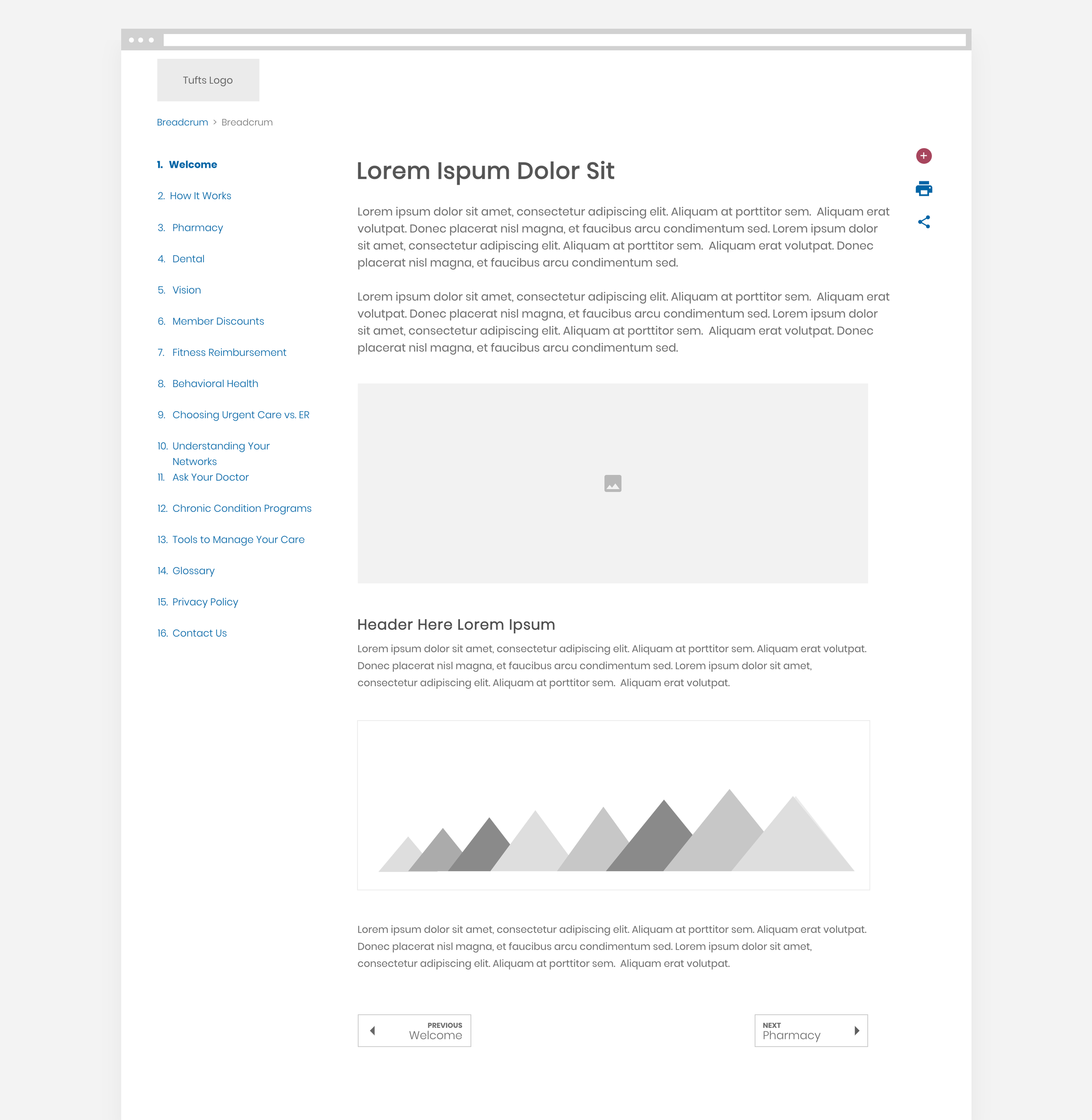 Tufts E-kit subpage Wireframe.png