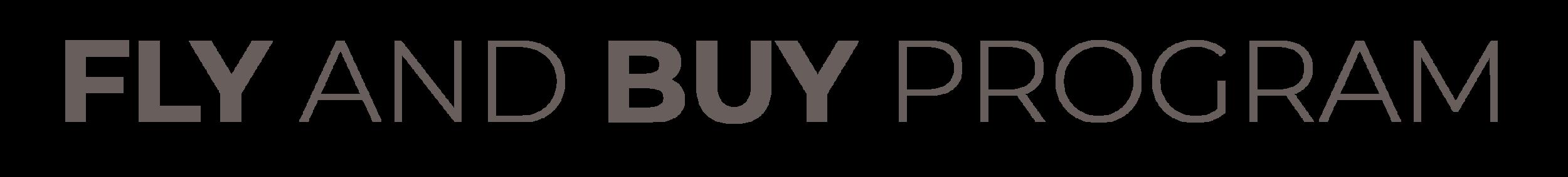 flyandbuybranding_tipos-04.png