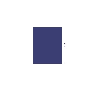 AMUSE FOR BIG IDEAS