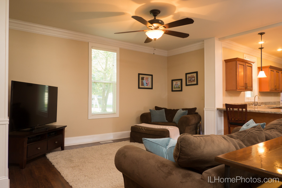 Interior home living room photograph for real estate in Delavan, IL :: Illinois Home Photography by Michael Gowin, Lincoln, IL