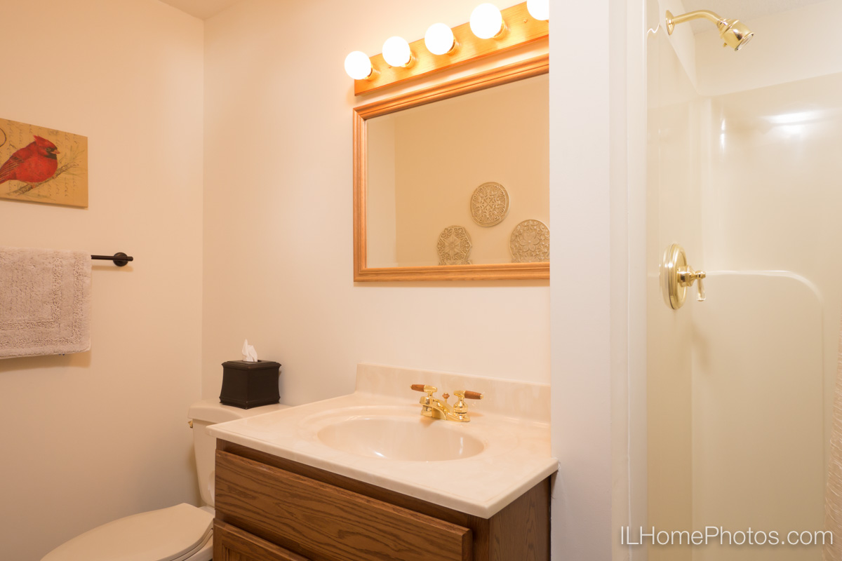 Interior bathroom photograph for real estate in Elkhart, IL :: Illinois Home Photography by Michael Gowin, Lincoln, IL