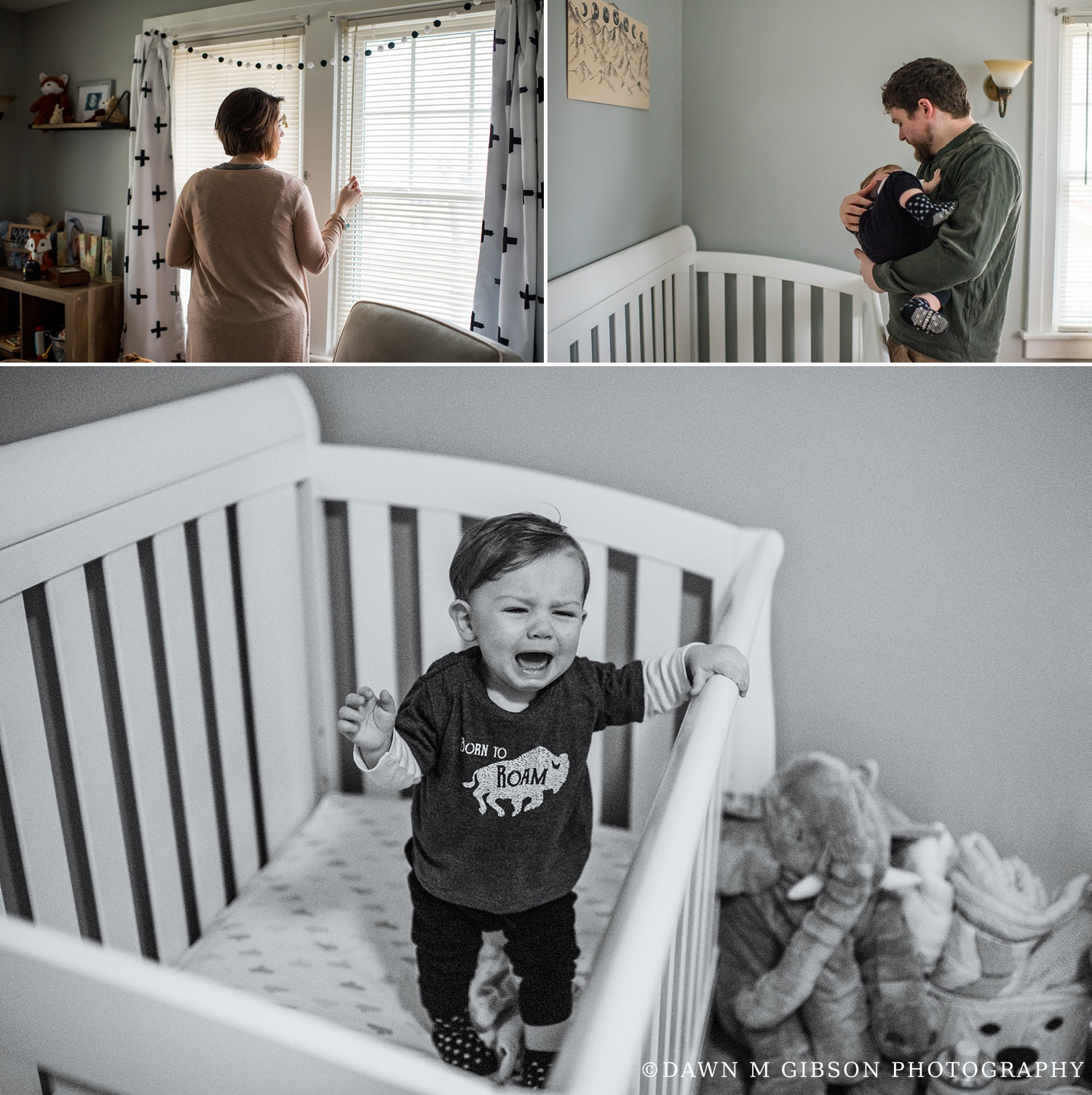 Hornbuckle Real Life Family Session