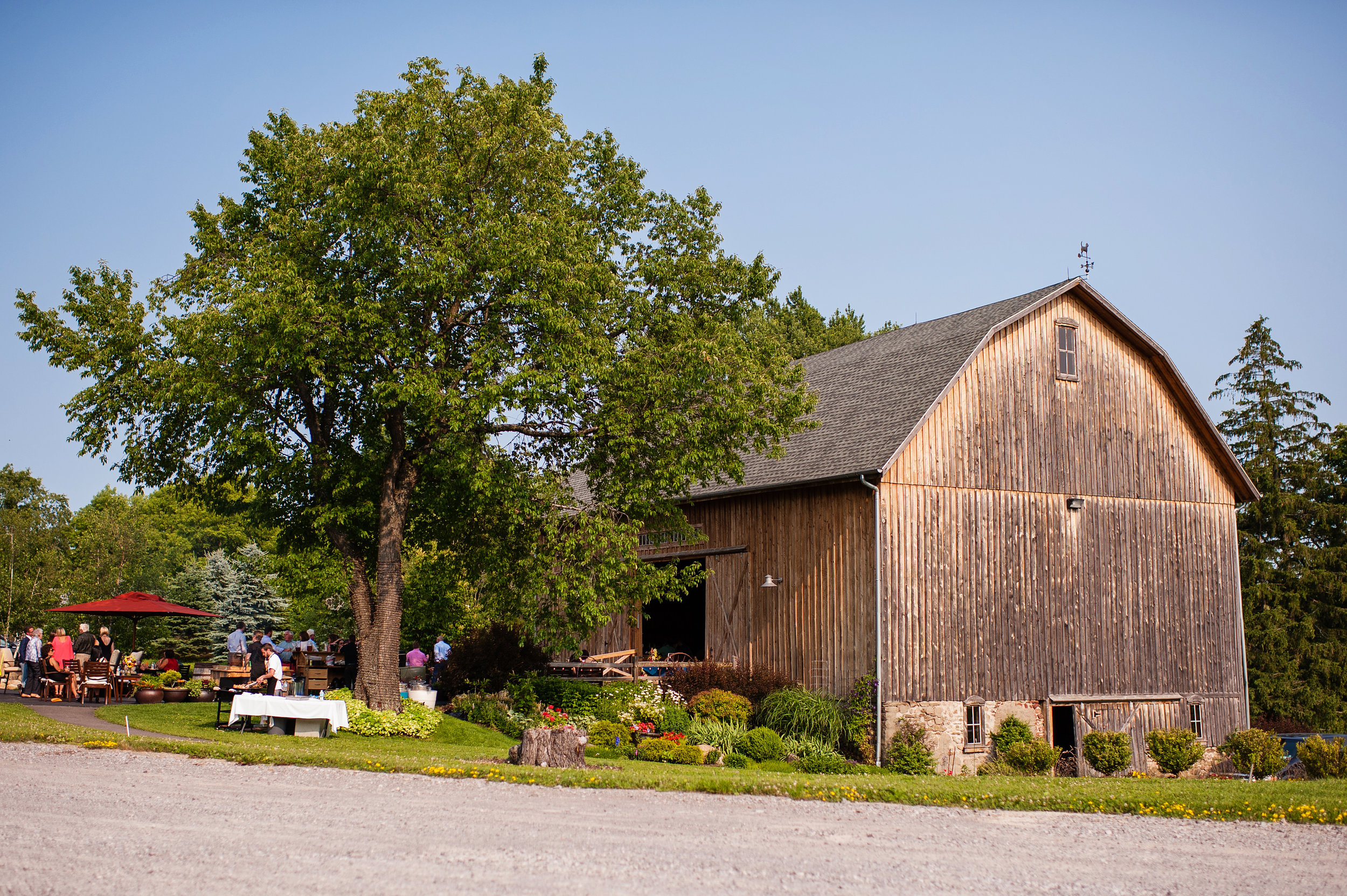 buffalo_wedding_venue_hayloftinthegrove_dawnmgibsonphotography_5.jpg
