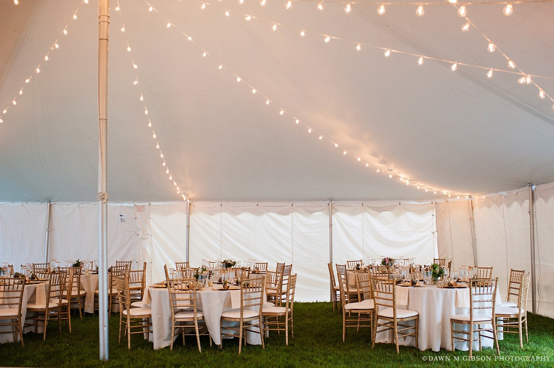 finger-lakes-newyork-wedding-photographer-sonnenberg-gardens-wedding-gold-wedding-dress-jenna-daniel_0050.jpg