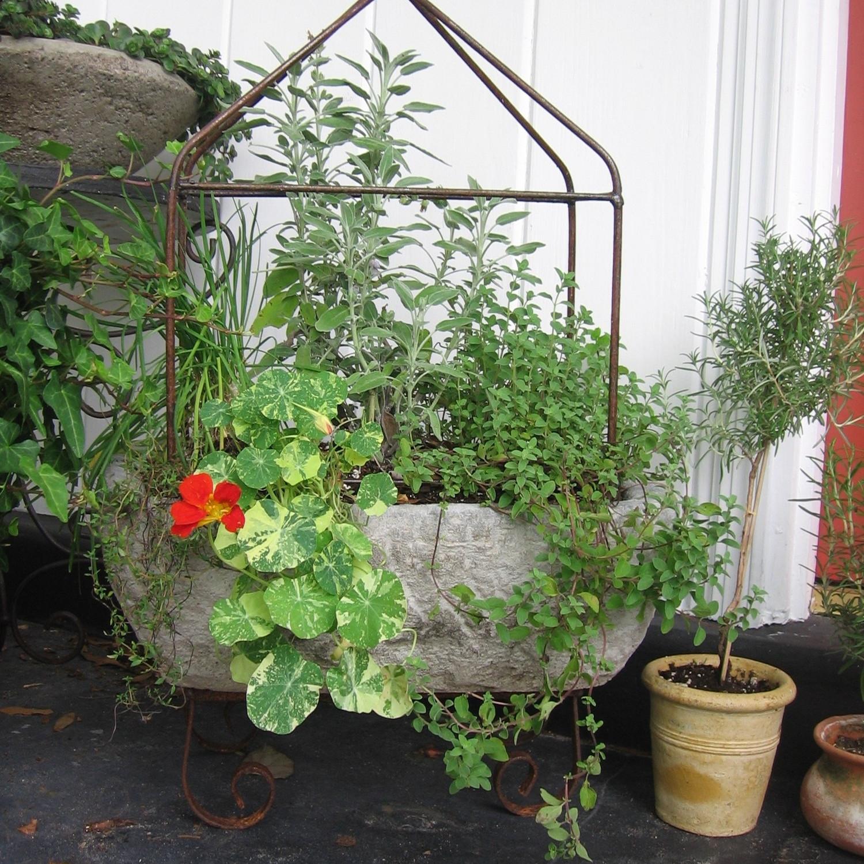 Botanical-Planter-Vine.jpg