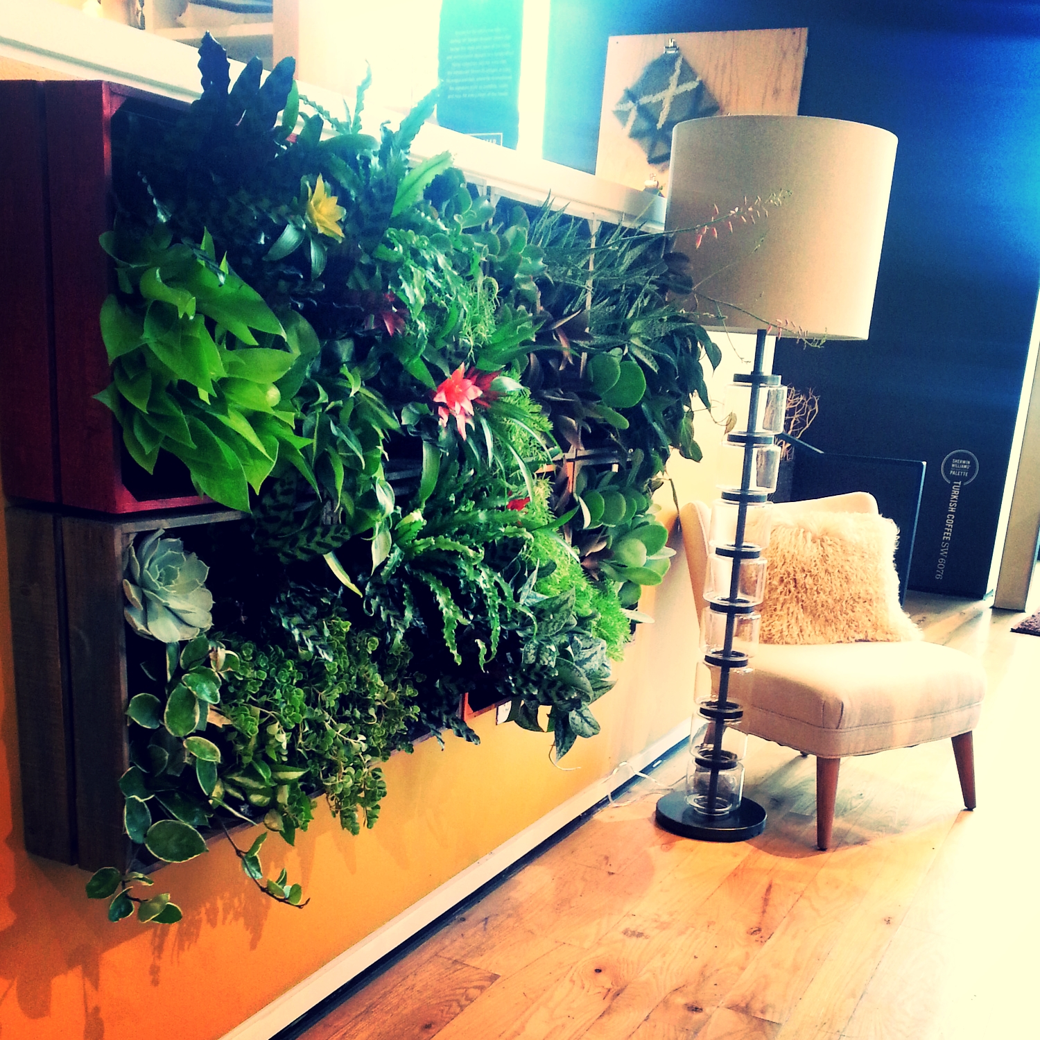 Living-Wall-West-Elm-Orlando.jpg