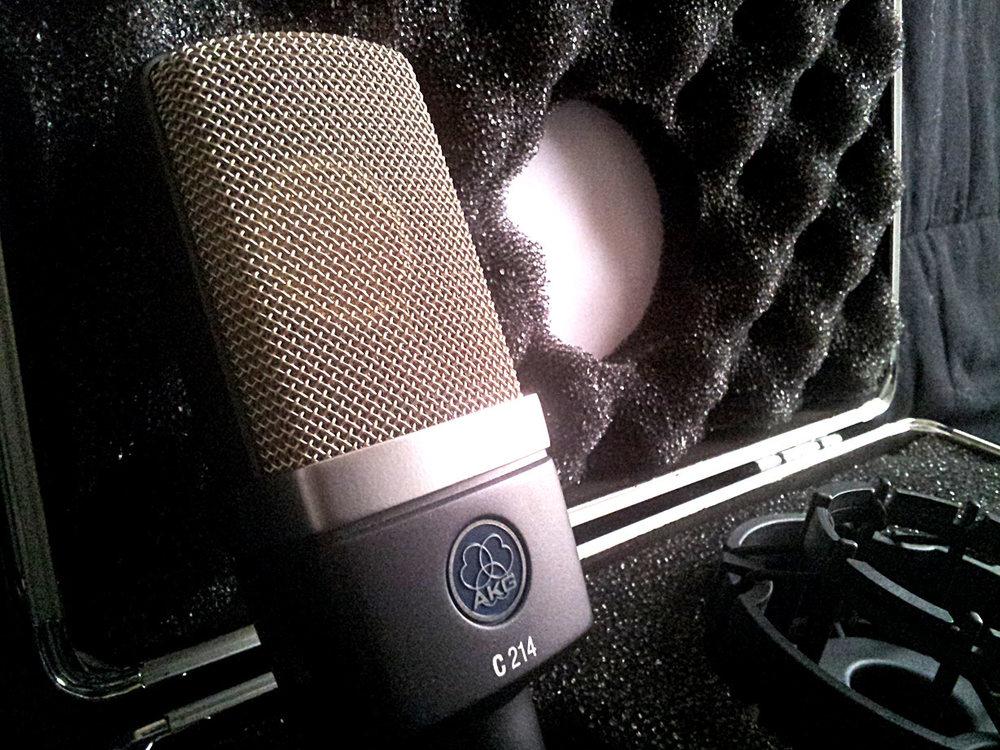 AKG C214 Large Diaphragm Condenser Microphone