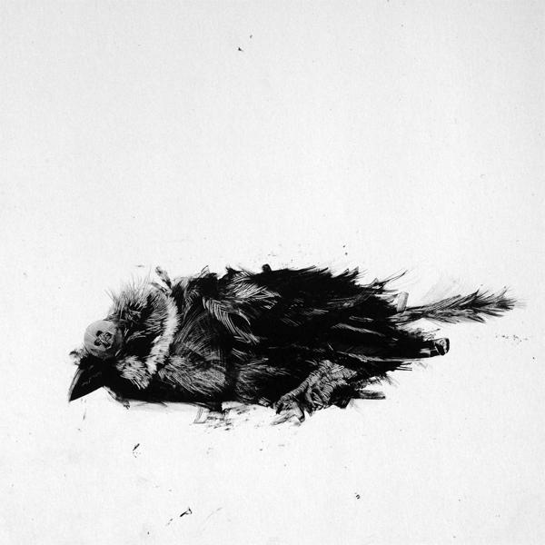 Boatman Bird #1