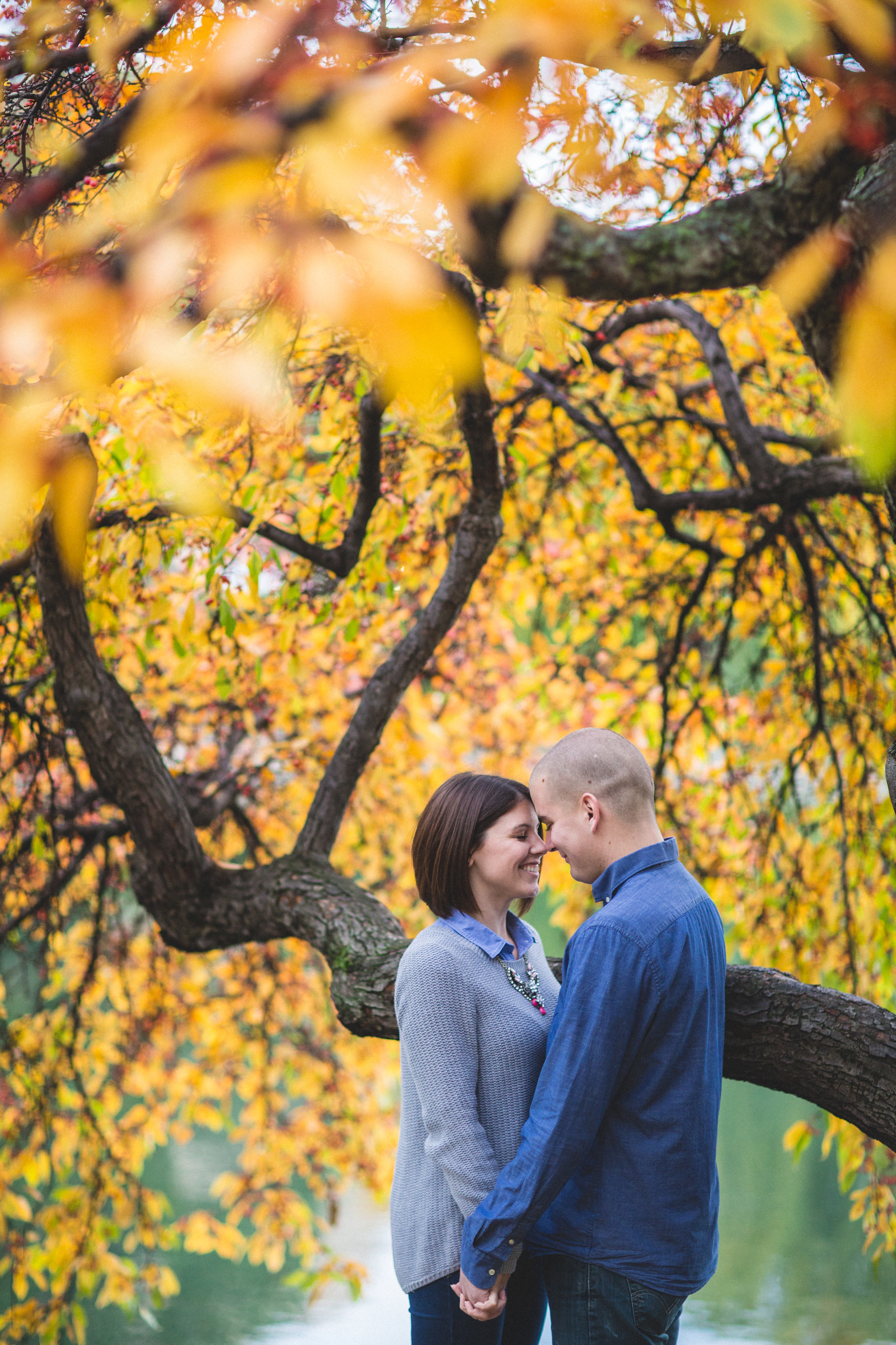 Cleveland Wedding photographer   Engagement at The Cleveland Museum of Art