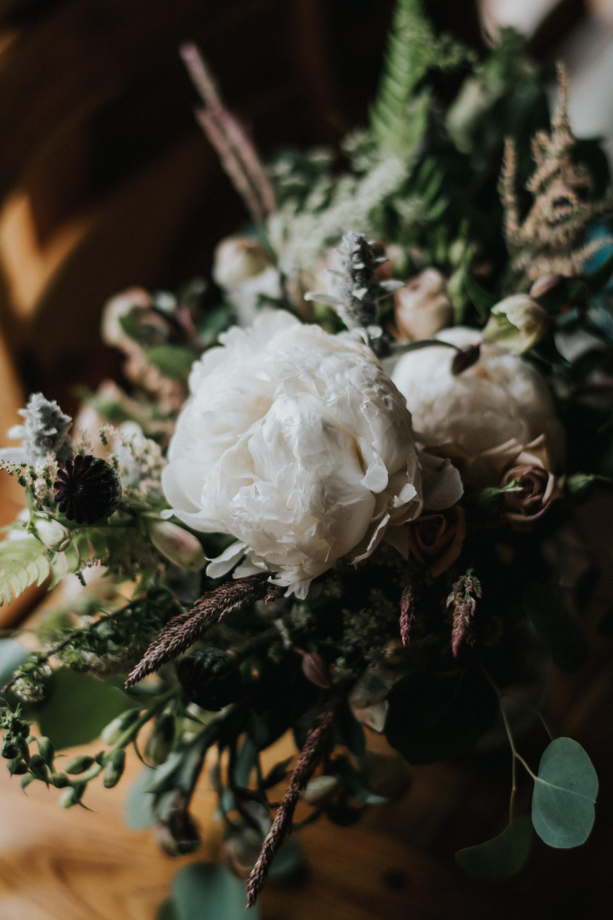 ELOPEMENT AT HURRICANE RIDGE WA | KRISTIN & ALEX