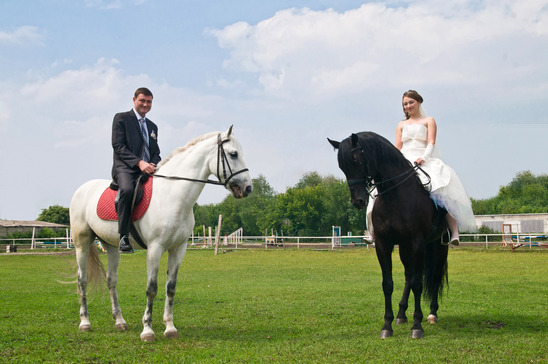 Marriage on Horses