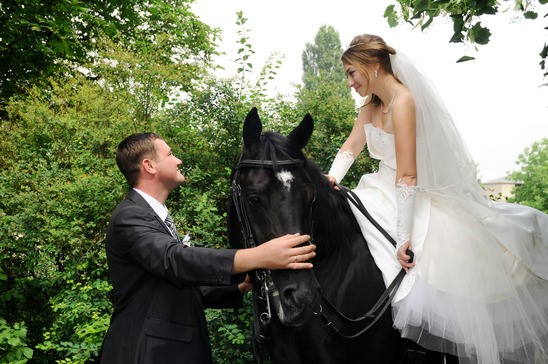 Bride, groom, and horse