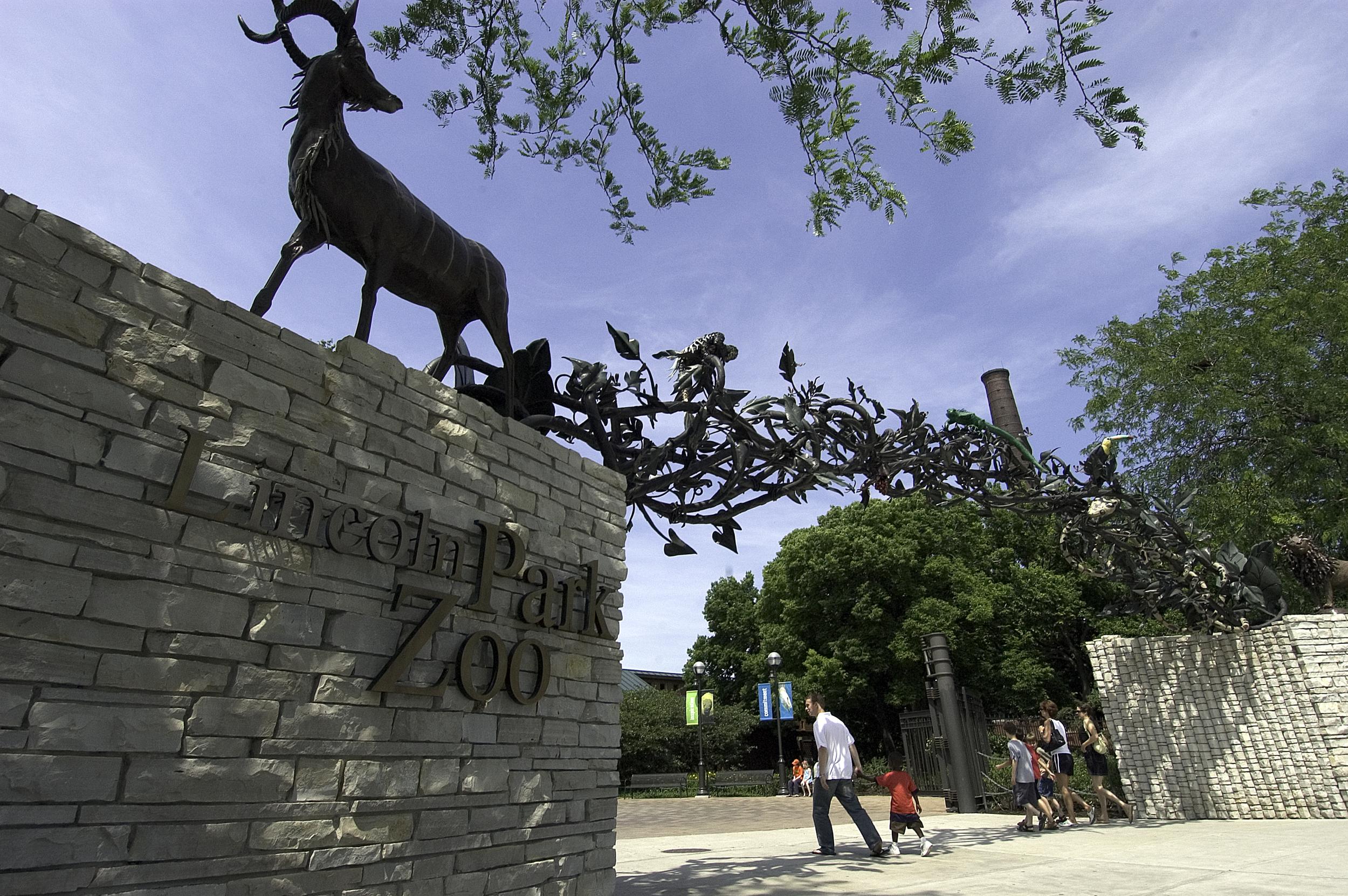 photo via  Lincoln Park Zoo