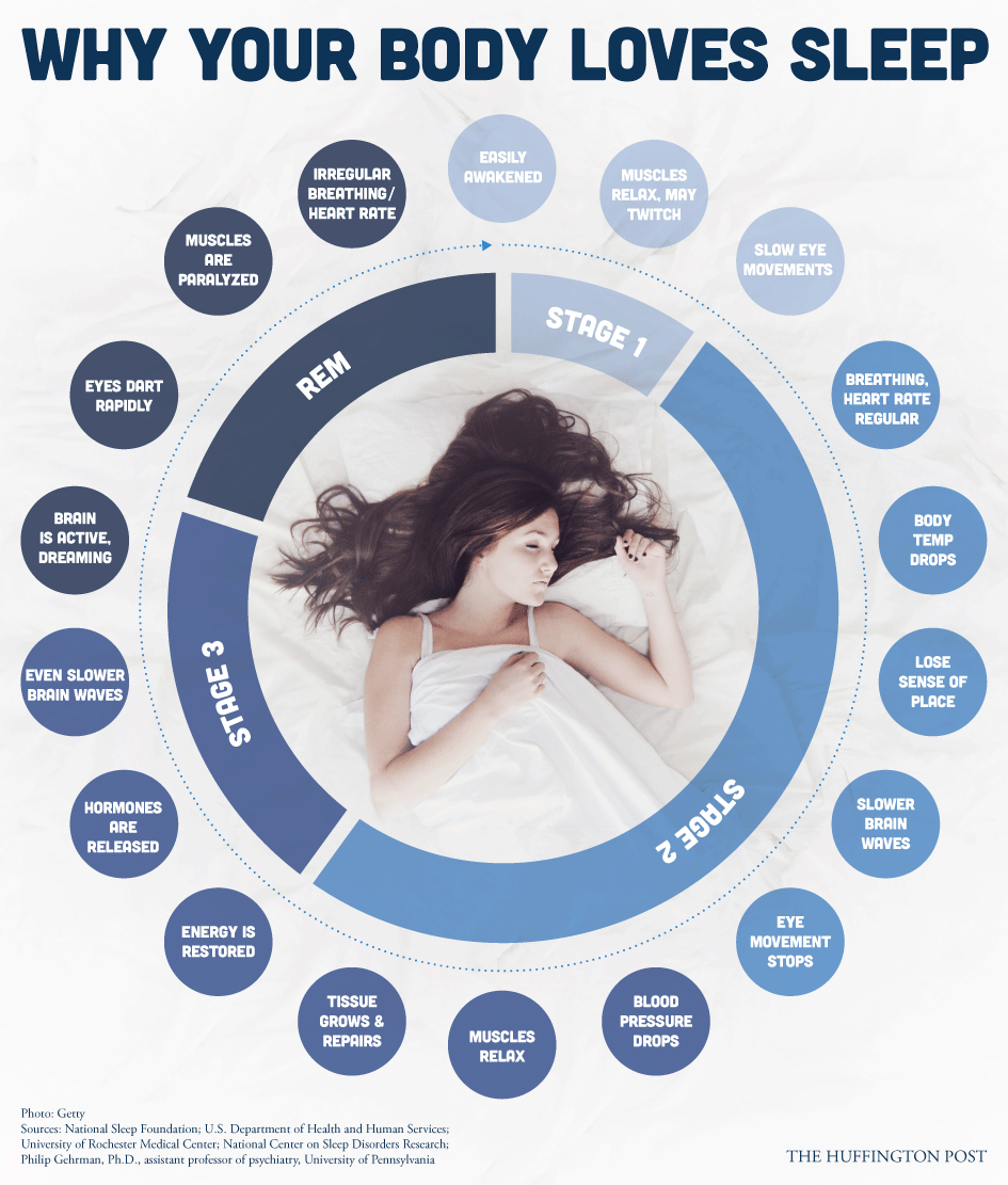 boise-mattress-why-your-body-needs-sleep.png