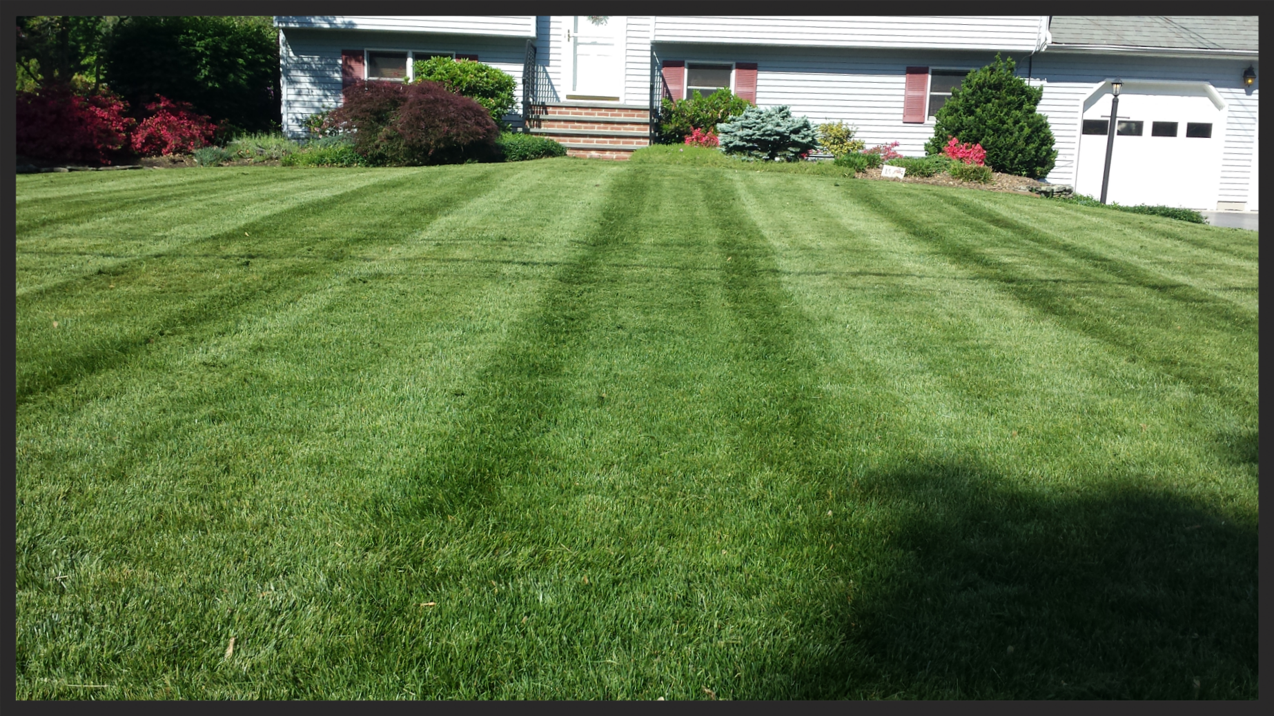 Green lawns require Weed Control and Fertilization. Weekly Mowing services make sure that your lawn is always looking great