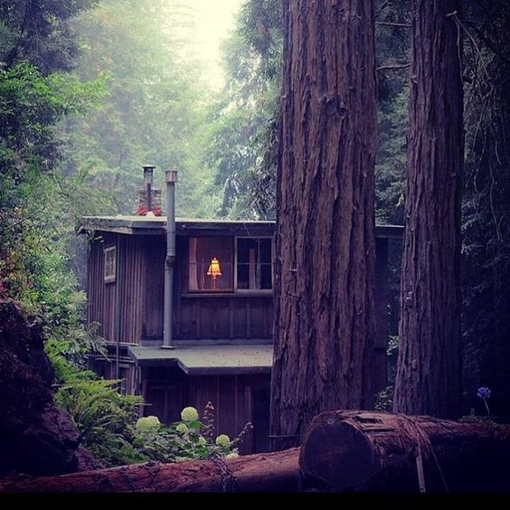 Big Sur Cabin in the Woods.jpg
