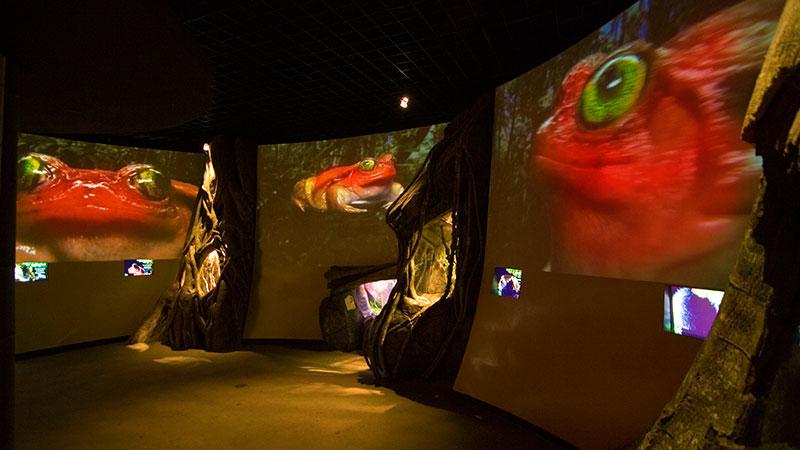 MuseumExhibit_thumbnail.jpg