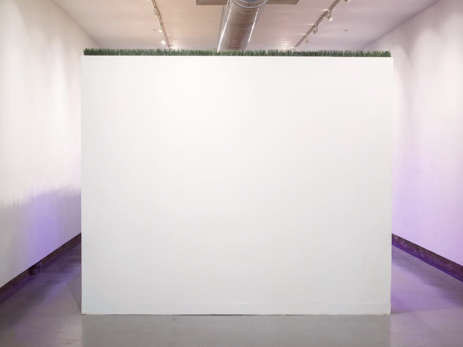 white cube. Come tomorrow and see this space come alive with wheatgrass and punk music.  #permacounterculture